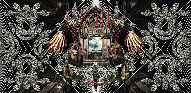 album_gamushara_dvd